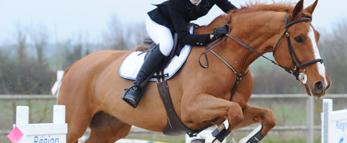 CSO : cheval sautant un obstacle